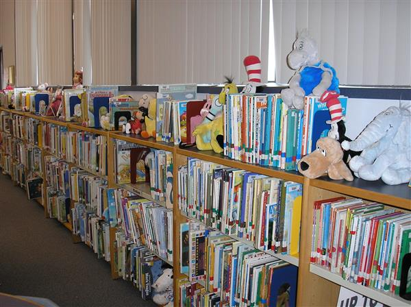 photo of primary fiction book shelves