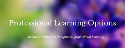 Professional Learning Options