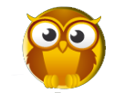 owl for friendwatch